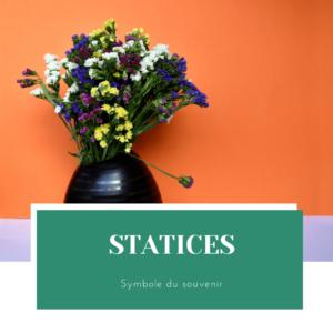 caractéristiques du statice